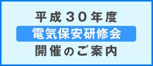平成30年度 電気保安研修会